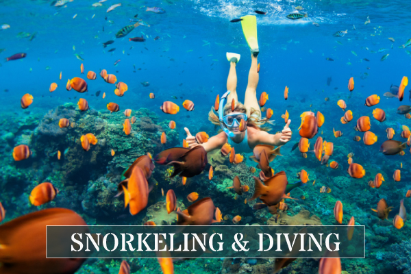 Snorkeling and Scuba Diving Excursions in Fiji with Hauraki Adventures
