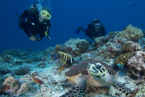 Learn to Scuba Dive and get certified in Fiji